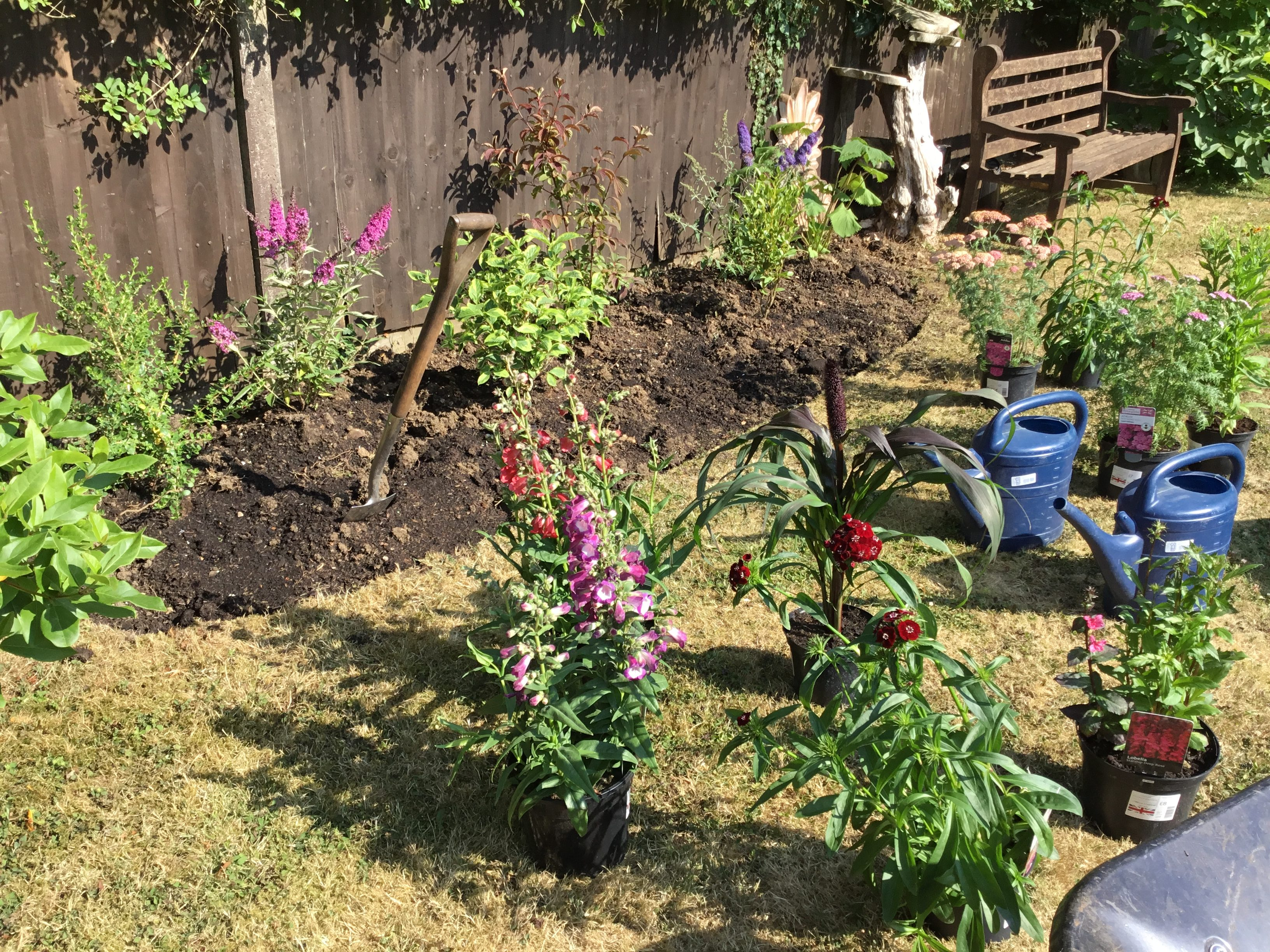 Planting New bed - Freda's Garden 2018