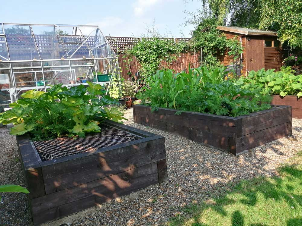 Allotment area and Greenhouse in Freda's Garden