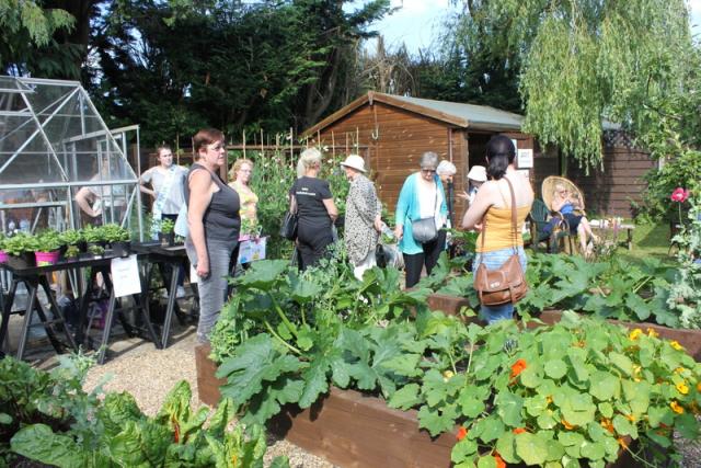 Music in the Garden 2017 - Freda's Garden